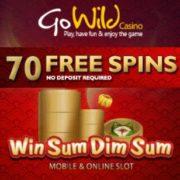 GoWild Casino Online free spins