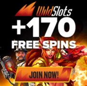 WIld Slots Casino free bonus